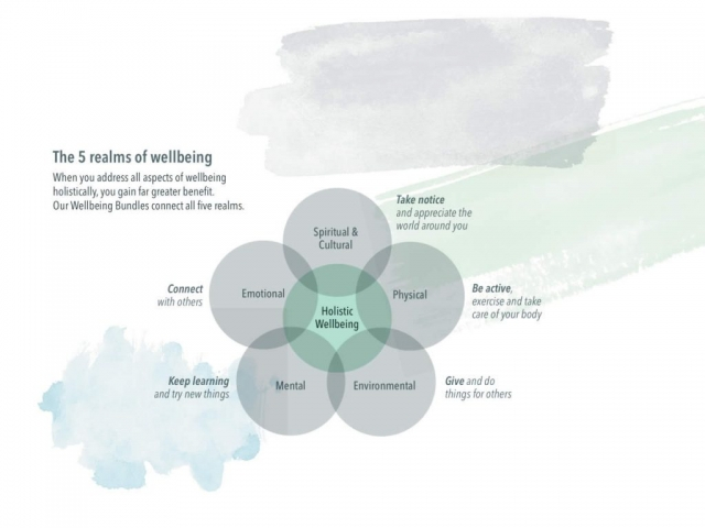 diagram showing 5 realms of wellbeing